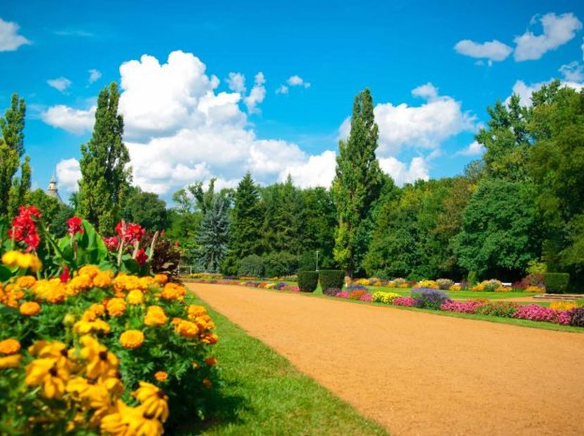 Top Things to Do on Margaret Island